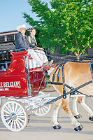 People drive a stagecoach into the Horse Barn for a show at the Iowa State Fair in Des, Moines, Iowa, on Sun., Aug. 11, 2019.