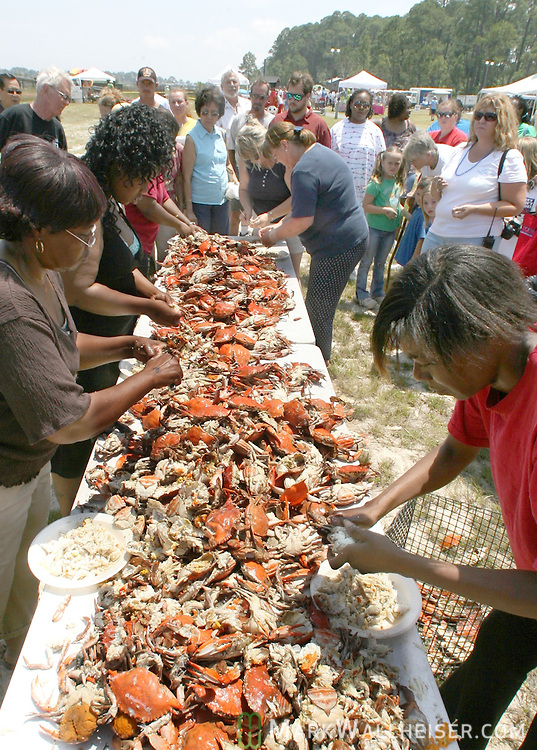 The crab picking contest at the 33rd Annual Panacea Blue Crab Festival at Woolley Park in Panacea, Florida May 5, 2007.  Festival attendees enjoyed fresh local blue crabs and entertainment by Mountain Dew Cloggers, Grant Peeples and King Cotton in addition to the annual mullet toss and crab picking contests.  (Mark Wallheiser/TallahasseeStock.com)