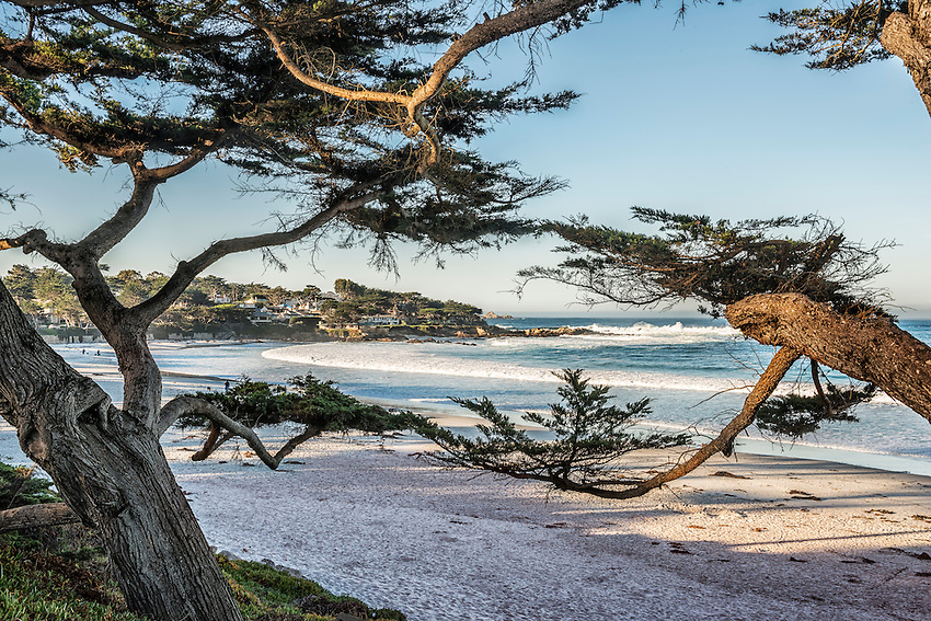 A view of the beach at Carmel-by-the-Sea, through the cypresses lining the Scenic Road, in early morning