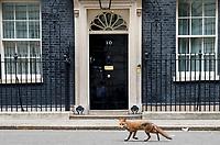 Cabinet 12 6 18