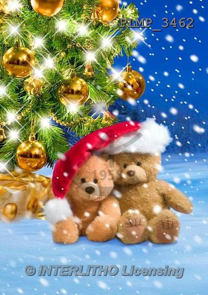 Marek, CHRISTMAS ANIMALS, WEIHNACHTEN TIERE, NAVIDAD ANIMALES, teddies, photos+++++,PLMP3462,#Xa# in snow,outsite,