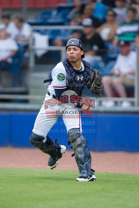 Danville Braves catcher William Contreras (24) makes a throw to third base against the Princeton Rays at American Legion Post 325 Field on June 25, 2017 in Danville, Virginia.  The Braves walked-off the Rays 7-6 in 11 innings.  (Brian Westerholt/Four Seam Images)