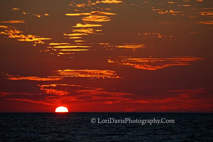 Red Sky, Sunset on Horizon  #FL21
