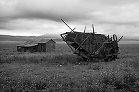 A combine harvester and tin roofed shack provide evidence of the Carrizo Plain's agricutural past as they slowly decay.