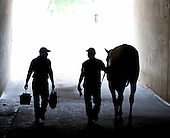 Awesome Maria heads back to the barn after winning the Grade 1 Ogden Phipps at Belmont Park.