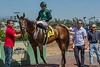 ARCADIA, CA APRIL 22:  #4 Inordinate ridden by Corey Nakatani, after winning the San Juan Capistrano Stakes (Grade lll) on April 22, 2017 at Santa Anita Park in Arcadia, CA.(Photo by Casey Phillips/Eclipse Sportswire/Getty Images)