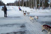 Joan Klejka runs on the inbound trail towards the finish line of the 2016 Junior Iditarod in Willow, Alaska, AK  February 28, 2016
