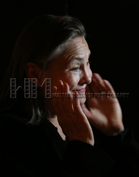 Cherry Jones 'In The Spotlight' at the Broadway Opening Night After Party for 'The Glass Menagerie' at the Redeye Grill on September 26, 2013 in New York City.