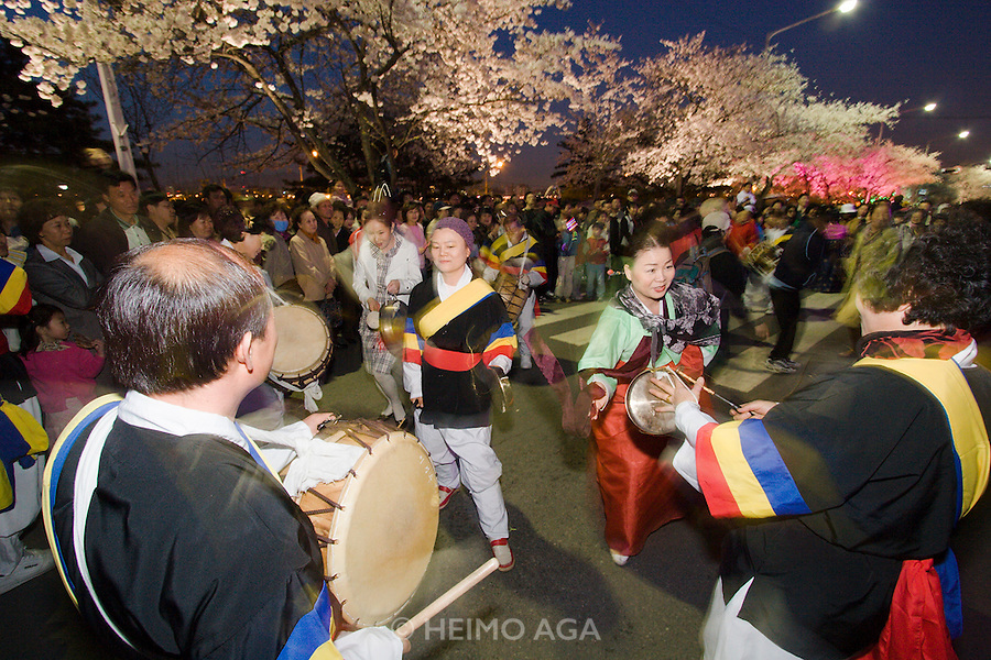 Yeouido Island. Hundreds of Thousands of Seoulites enjoy the Cherry Blossom in Yunjungno, the street around the National Assembly lined by cherry trees which has been cleared from traffic for these days. People dancing with traditional Korean drummers.