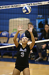 Marymount's Zacharie Jackson sets in a college volleyball game, in Arlington, Vir., on Saturday, Nov. 1, 2014.<br /> Photo by Cathleen Allison