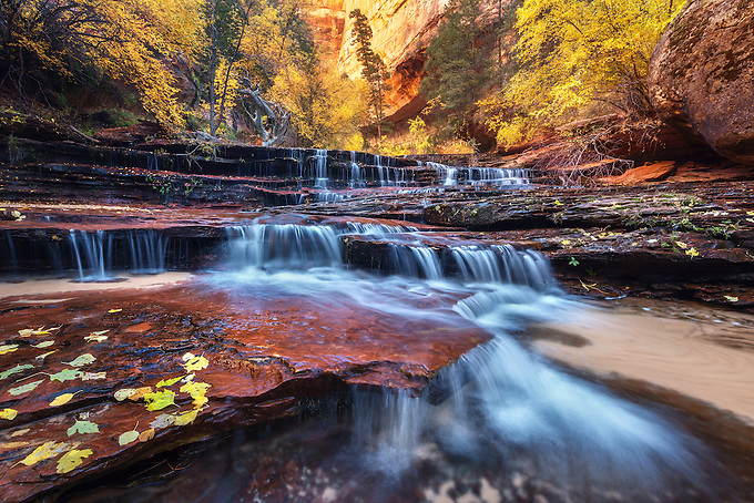 A cascade over sandstone in the wilderness of Zion National Park at the peak of autumn color. <br /> Artist Edition: 15/200 Limited