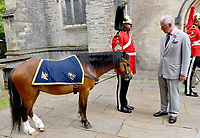 JUL 01 Prince Charles at Memorial Service to Mark 60th Anniversary of Welsh Cavalry
