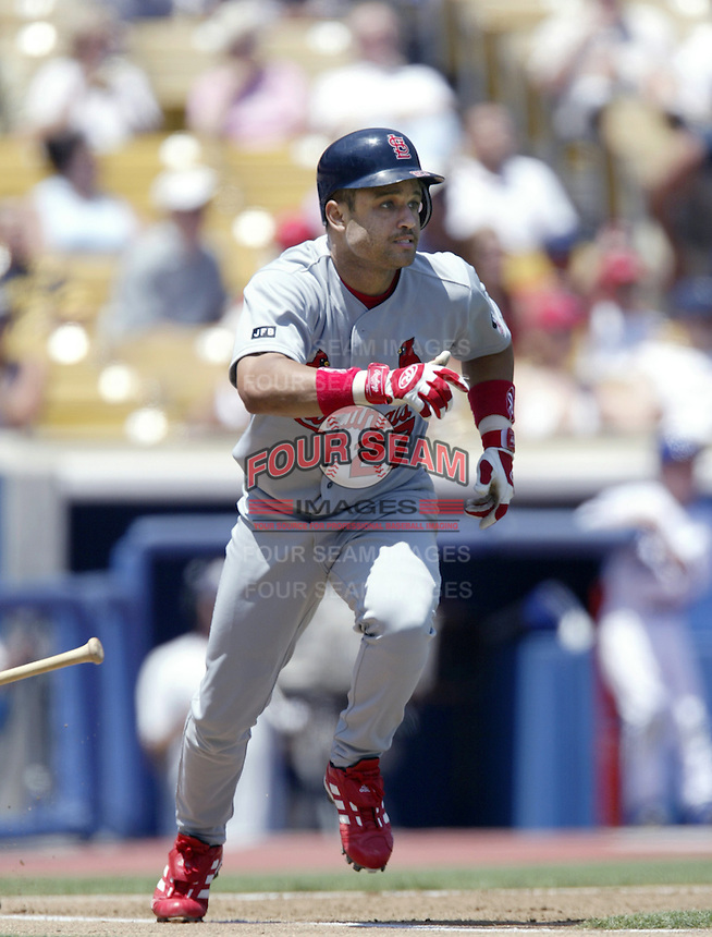 Placido Polanco of the St. Louis Cardinals bats during a 2002 MLB season game against the Los Angeles Dodgers at Dodger Stadium, in Los Angeles, California. (Larry Goren/Four Seam Images)