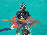 TAE- Ultimate Snorkeling Tour during HAL Konsingdam S. Caribbean Cruise, Grand Turk, Turks & Caicos