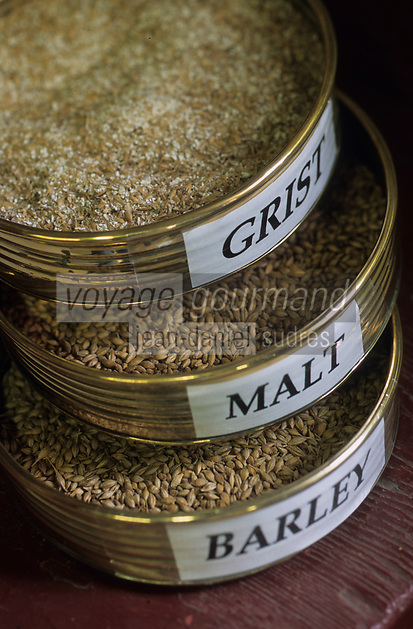 Europe/Grande-Bretagne/Ecosse/Moray/Speyside/Keith : Distillerie Strathisia Whisky Chivas - Orge, malt et grist ou malt moulu au moulin