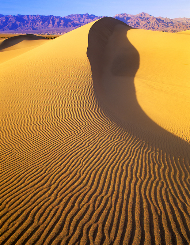 Long knife edged sand dunes. Death Valley National Park, California