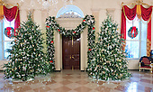 """The 2016 White House Christmas decorations are previewed for the press at the White House in Washington, DC on Tuesday, November 29, 2016. Pictured are the Christmas Trees on either side of the North Entrance to the State Floor. The first lady's office released the following statement to describe those decorations, """"This year's holiday theme, 'The Gift of the Holidays,' reflects on not only the joy of giving and receiving, but also the true gifts of life, such as service, friends and family, education, and good health, as we celebrate the holiday season.""""<br /> Credit: Ron Sachs / CNP"""