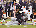 Washington Huskies running back Bishop Stankey rushes against Oregon State Beavers before getting hit by cornerback Rashaad Reynolds at CenturyLink Field in Seattle, Washington on October 27, 2012.  Stankey rushed for 98 yards  on 25 carries and scored two touchdowns in  the Huskies  20-17 upset win over the 7th ranked Beavers.   ©2012. Jim Bryant Photo. ALL RIGHTS RESERVED.