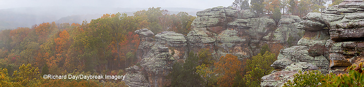 63895-15516 Camel Rock foggy fall day Garden of the Gods Recreation Area Shawnee National Forest IL