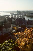 Europe/France/Centre/37/Indre-et-Loire/Amboise : La Loire depuis les terrasses du château