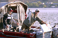 A fisherman holds up a chinook salmon caught on an early morning fishing trip on Lake Chelan, Washington.