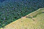 Desmatamento da Floresta Amazônica. Acre. 2000. Foto de Ricardo Azoury.