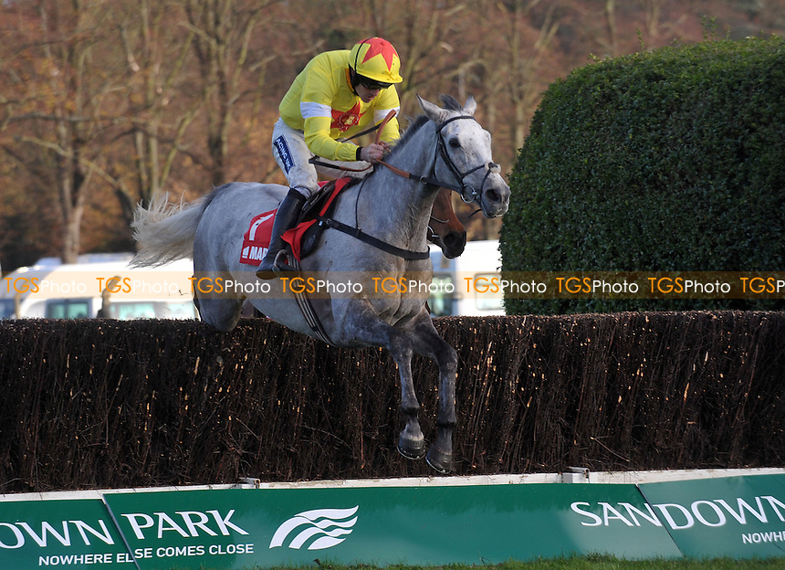 Al Ferof ridden by Ruby Walsh jumps the last fencee on his way to victory in the Markel Insurance Henry VIII Novices´ Chase  at Sandown Park Racecourse, Esher, Surrey - 03/12/2011 - MANDATORY CREDIT: Martin Dalton/TGSPHOTO - Self billing applies where appropriate - 0845 094 6026 - contact@tgsphoto.co.uk - NO UNPAID USE.