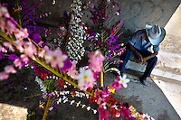"""A Salvadoran cowboy rests during the Flower & Palm Festival in Panchimalco, El Salvador, 8 May 2011. On the first Sunday of May, the small town of Panchimalco, lying close to San Salvador, celebrates its two patron saints with a spectacular festivity, known as """"Fiesta de las Flores y Palmas"""". The origin of this event comes from pre-Columbian Maya culture and used to commemorate the start of the rainy season. Women strip the palm branches and skewer flower blooms on them to create large colorful decoration. In the afternoon procession, lead by a male dance group performing a religious dance-drama inspired by the Spanish Reconquest, large altars adorned with flowers are slowly carried by women, dressed in typical costumes, through the steep streets of the town."""