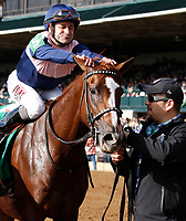 """LEXINGTON, KY - October 7, 2017.  #5 Zipessa and jockey Joe Bravo win the 20th running of the First Lady, Grade 1 $400,000 """"Win and You're In Breeders' Cup Filly & Mare Turf"""" for owner Empyrean Stables (Patrick Gallagher) and trainer Michael Stidham at Keeneland Race Course.  Lexington, Kentucky. (Photo by Candice Chavez/Eclipse Sportswire/Getty Images)"""