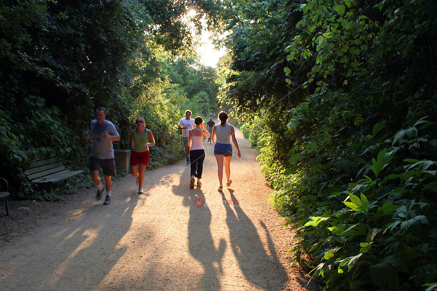 Green trees and green belt make the town lake hike and bike trail is a runners paradise in austin, texas