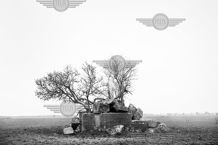 A concrete defensive structure stands next to a tree in a field along the route of the Atlantic Wall (Atlantikwall in German).The Atlantic Wall (or Atlantikwall in German) was a system of defensive structures built by Nazi Germany between 1942 and 1945, stretching over 1,670 miles (2,690 km) along the coast from the North of Norway to the border between France and Spain at the Pyrenees. The wall was intended to repulse an Allied attack on Nazi-occupied Europe and the largest concentration of structures was along the French coast since an invasion from Great Britain was assumed to be most likely. Slave labour and locals paid a minimum wage were drafted in to supply much of the labour. There are still thousands of ruined structures along the Atlantic coast in all countries where the wall stood except for Germany, where the bunkers were completely dismantled.