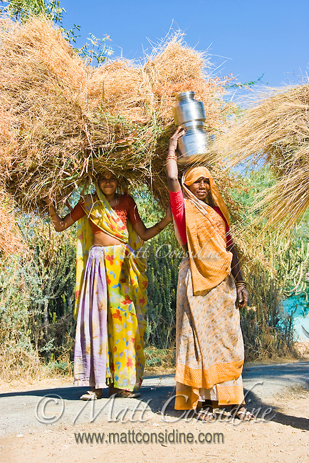 Two women carrying hay and water in rural Rajasthan.<br /> (Photo by Matt Considine - Images of Asia Collection)