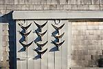 Rustic marina shack with fish tail dispay on door, Taylors Pond, Cape Cod, Massachusetts, USA