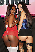 Skyler Nicole, Rachel Rose at Exxxotica, Broward County Convention Center, Fort Lauderdale, FL, Friday May 2, 2014.