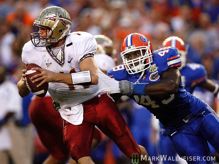 Florida Gators defensive end Jermaine Cunningham sacks FSU quarterback Drew Weatherford and Weatherford was called for intentional ground in the first half of the annual Florida-Florida State football game in Gainesville, Florida November 24, 2007.   (Mark Wallheiser/TallahasseeStock.com)