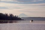Seattle, Lake Washington, Mount Rainier, sunrise, lone sea kayaker, Bellevue, King County, Washington State, Pacific Northwest, United States,