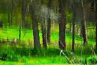 """MEADOW MIRAGE""<br />