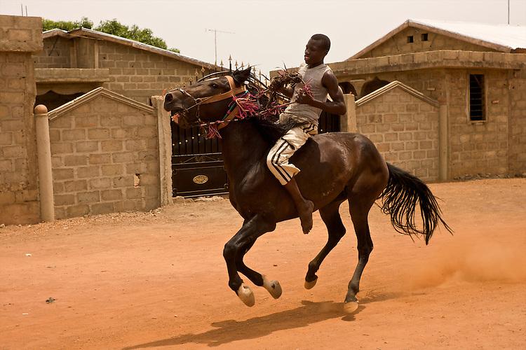 Danda is mounted by Moussa Atta's nephew. Danda has to gallop a bit before his bath.<br />  <br /> Danda est mont&eacute; par le neveu de Moussa Atta. Danda doit faire quelques galops avant d'&ecirc;tre lav&eacute;.