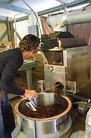 Roasting Kaleo's Koffee, Hamakua area, Big island of Hawaii