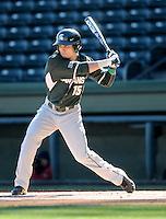 Center fielder Anthony Cheky (15) of the Michigan State Spartans hits in a game against the Northwestern Wildcats on Sunday, February 17, 2013, at Fluor Field at the West End in Greenville, South Carolina. Michigan State won, 7-4. (Tom Priddy/Four Seam Images)