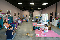 NWA Democrat-Gazette/BEN GOFF @NWABENGOFF<br /> Guests play with the cats Saturday, Oct. 5, 2019, at Purr Catfe in Fayetteville. The non-profit is open for 'Purr Therapy' visits and all the cats are available for adoption.