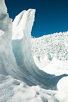 Walking under massive ice waves on Franz Josef Glacier. Main Icefall in background, Westland Tai Poutini National Park, UNESCO World Heritage Area, West Coast, New Zealand, NZ