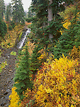 Mount Baker-Snoqualmie National Forest, WA <br /> Galena Falls tumbles over a rocky basalt cliff in the autumn forest below Heather Meadows