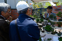 Shoppers at the Omiya Bonsai Festival, Bonsai Village, Omiya, Saitama Prefecture, Japan, May 3, 2013. The Omiya Bonsai Village was founded in 1925 and is Japan's most famous production center for bonsai.