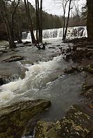 NWA Democrat-Gazette/FLIP PUTTHOFF<br />Falling Water Creek flows full and fast Feb. 23 2018 in the Ozark National Forest.
