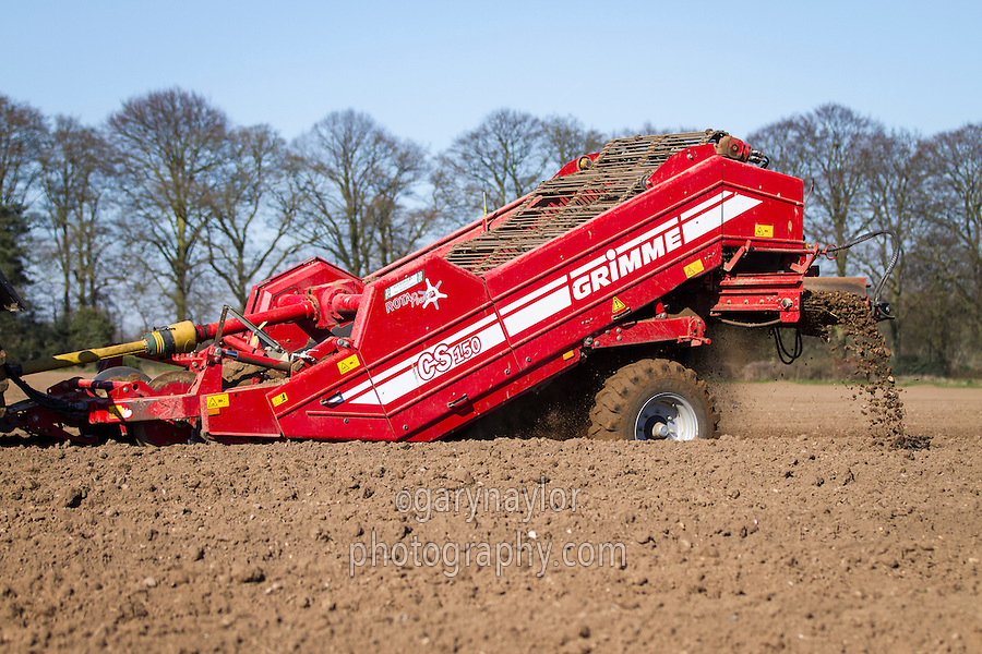 Destoning potato besds with Grimme 150 destoners - March, Norfolk