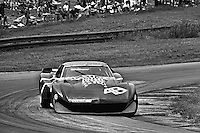 LEXINGTON, OH - JUNE 30: Sam Posey drives the John Greenwood Racing Chevrolet Corvette during the 5 Hours of Mid-Ohio IMSA Camel GT race at the Mid-Ohio Sports Car Course near Lexington, Ohio, on June 30, 1974. (Photo by Bob Harmeyer)