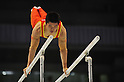 Huang Yuguo (CHN), JULY 2nd, 2011 - Artistic Gymnastics : JAPAN CUP 2011, Men's Team competition at Tokyo Metropolitan gymnasium, Tokyo, Japan. .(Photo by Atsushi Tomura/AFLO SPORT) [1035].