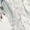Plumeria<br /> PL