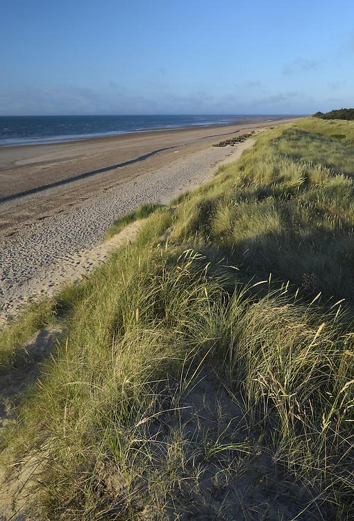 Sand Dunes, Holme Norfolk